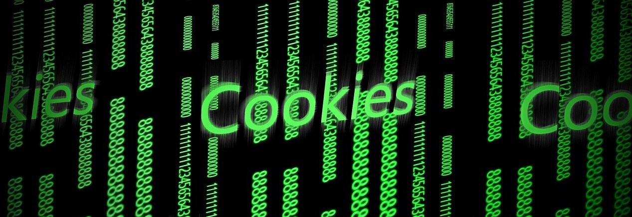 cookies policy dlskitshub.com