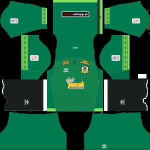 Dream League Soccer DLS 512×512 Perak GoalKeeper Home Kits