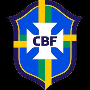DLS Brazil Logo