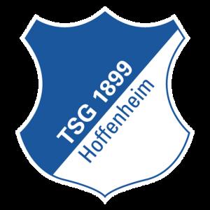 DLS TSG Hoffenheim Logo PNG