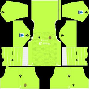 Dream League Soccer DLS 512×512 Hellas Verona FC GoalKeeper Home Kits