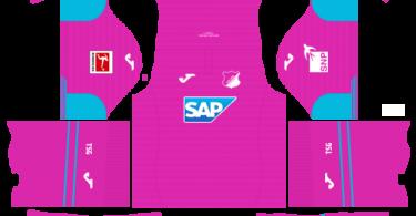 Dream League Soccer DLS 512×512 TSG Hoffenheim Third Kits